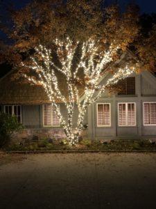 Outdoor LED Landscape Lighting Pros & Christmas Light Installation Pros in Sugar Hill GA
